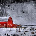 Rural Textures by Evelina Kremsdorf
