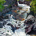 Rushing Waters by John Lautermilch
