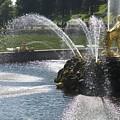 Russia, Samson Fountain At Peterhof by Keenpress