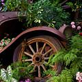 Rusty Truck In The Garden by Garry Gay