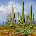 Saguaro Scene 1 by Summer Celeste
