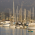 Sailboats Docked In The Santa Barbara by Rich Reid