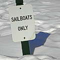 Sailboats Only by Elizabeth Hoskinson