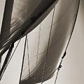 Sailing Beneteau 49 Sloop by Dustin K Ryan