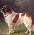 Saint Bernard by Heinrich Sperling