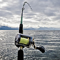 Salmon Fishing Rod by Darcy Michaelchuk