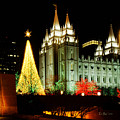 Salt Lake Temple Christmas Tree by La Rae  Roberts