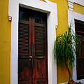 San Juan Doors by Perry Webster