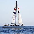 Santa Cruz Sailing by Marilyn Hunt