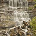 Scenic Alger Falls  by Michael Peychich