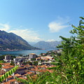 Sea View From Kotor by Elizabeth Fontaine-Barr