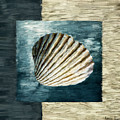 Seashell Souvenir by Lourry Legarde