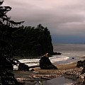 Serene And Pure - Ruby Beach - Olympic Peninsula Wa by Christine Till