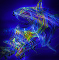 Shark Beauty by Michael Durst