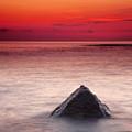 Shark Fin by Evgeni Dinev