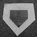 Shea Stadium Home Plate In Black And White by Rob Hans