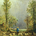 Sheep Watching A Storm by Constant-Emile Troyon