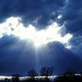 Shining Glory by Thomas R Fletcher