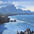 Shipwreck Beach by Ian Henderson