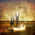 Shrimp Boat In Charleston by Susanne Van Hulst