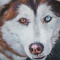 Siberian Husky Red by Lee Ann Shepard