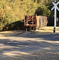 Sierra Railway Hoppers by Troy Montemayor