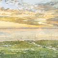 Siesta Key Sunset by Shawn McLoughlin