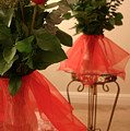 Skirted Roses In Mirror by Kristin Elmquist