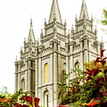 Slc Temple Angle by La Rae  Roberts