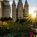 Slc Temple Sunburst by La Rae  Roberts