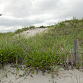 Smugglers Beach Dune South Yarmouth Cape Cod Massachusetts by Michelle Wiarda