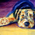 Snooze Airedale Terrier by Lyn Cook