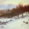 Snow Covered Fields With Sheep by Joseph Farquharson