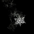 Snowflake by Mark Watson (kalimistuk)