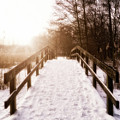 Snowy Bridge by Wim Lanclus