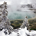 Snowy Yellowstone by Jason Maehl