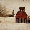 South Dakota Corn Crib by Julie Hamilton