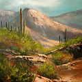 Southwest Beauty by Robert Carver