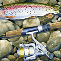 Spin Trout by Mark Jennings