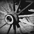 Spoked Wheel by Perry Webster