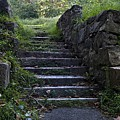 Stairs To . . .      by Murray Bloom