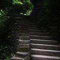 Stairway Watkins Glen 1  by InTheSane DotCom