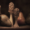 Still Life With Mushrooms And Pears II by Tom Mc Nemar