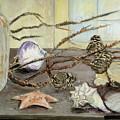 Still Life With Seashells And Pine Cones by Ethel Vrana
