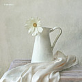 Still Life With White Flower by by MargoLuc