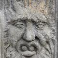 Stone Face by Michal Boubin