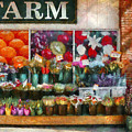 Store - Westfield Nj - The Flower Stand by Mike Savad