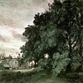 Study Of Trees by John Constable