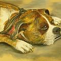 Sunday Arts Fair Dog In A Mood by Deborah Willard