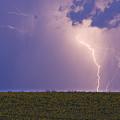 Sunflower Fields Lightning Storm Nature Print by James BO  Insogna